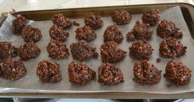 Healthy no-bake cookies recipe ~ Concealed Foundation